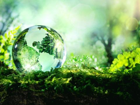 Ambiente e Gestione Rifiuti