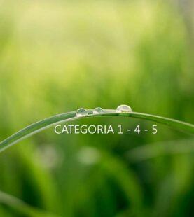 Responsabile Tecnico Gestione Rifiuti : corso preparatorio alle verifiche Albo Gestori CATEGORIE 1-4-5 | MAGGIO/GIUGNO 2021