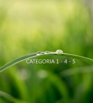Responsabile Tecnico Gestione Rifiuti : corso preparatorio alle verifiche Albo Gestori CATEGORIE 1-4-5 | NOVEMBRE 2021 >>>FORMAZIONE A DISTANZA<<<