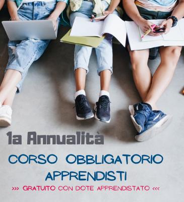 Corso OBBLIGATORIO APPRENDISTI 1annualità | Gratuito con Dote Apprendistato | Settembre 2021 <br> >>> formazione a distanza <<<